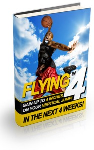 flying_in_four_book